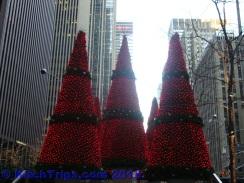 Christmas trees at FOX News