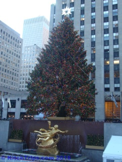 The most famous tree in the world?